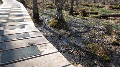 Protection des milieux humides